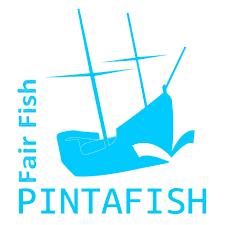 Louvain - Veeakker Pintafish